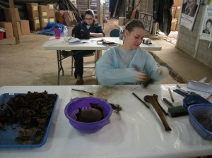 Elise Geissler cleans human bones in FAFG's search for victims of Guatemala's armed conflict. Photo by Barbara Borst