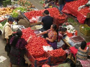 The market at Chichicastenango, a largely Maya town in the highlands of Guatemala. Photos by Barbara Borst
